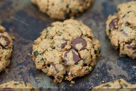 fresh mint chip recipe fresh mint chocolate chip cookies recipe