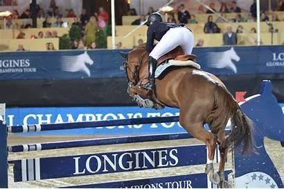 Horse Jumping Breed Zangersheide Zang Dressage Horses