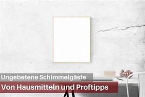 Schimmel In Der Dusche Entfernen : wie sie schimmel an der wand entfernen ~ Buech-reservation.com Haus und Dekorationen