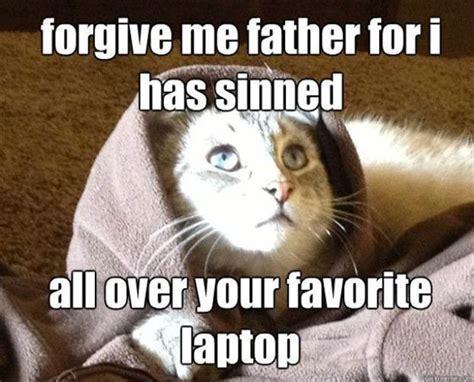 Jesus Cat Meme - capshuns 171 some animals are crackers