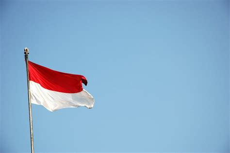 logo bendera indonesia HD Wallpapers Buzz Indonesia