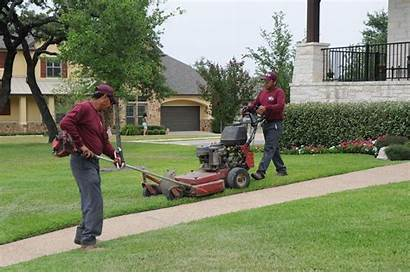 Lawn Services Care Yard Beach Landscaping Service