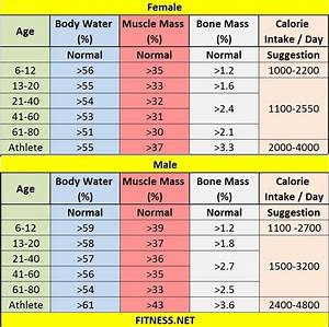 Image Gallery healthy woman muscle percentage