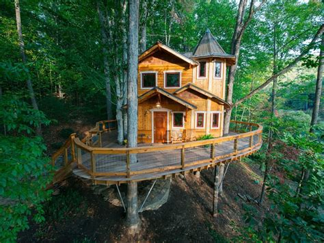 cool treehouses    world cool  collection collthingscouk
