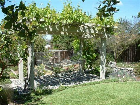 Best Place To Buy Trellis by 30 Fascinating Grape Arbor Ideas The Patio Decor