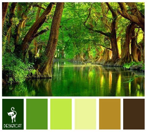Rain Forest Brown, Coffee, Sand, Beige, Green, Leaf