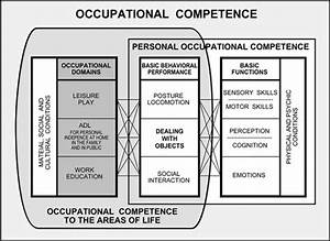 Occupational Competence Model