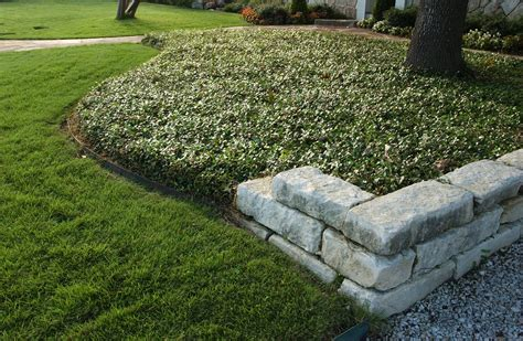 Low Maintenance Drought Friendly Landscapes Call For