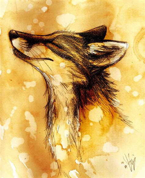 fox fox fan art 24572761 fanpop