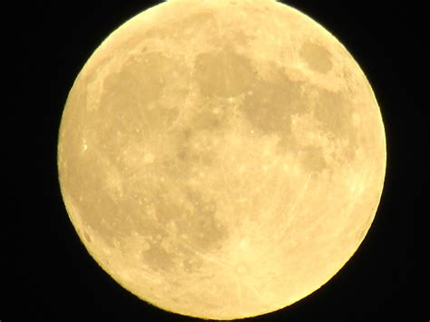 shabby apple norman park ga moon lights 28 images gamer s tag moonlight moon light photograph by saija lehtonen moon