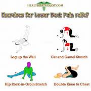 Health Brings Joy - Useful health   fitness news  tips and advice   Lower Back Stretches For Pain Relief