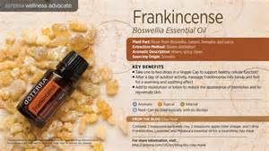 Pictures of Frankincense Oil