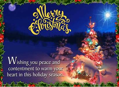 Warm Wishes Season Greetings 123greetings Merry Messages