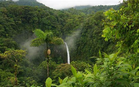 banco de imagenes gratis nueva coleccion de paisajes naturales