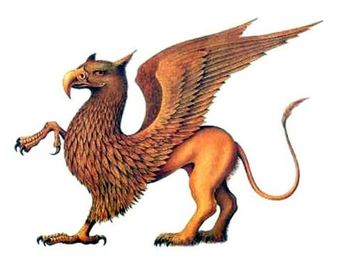 griffin mythortruthcom mythical creatures beasts