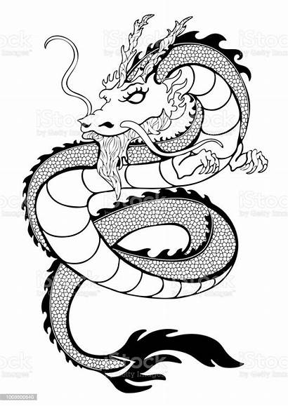 Dragon Outline Tattoo Drawing Snake Coloring Vector