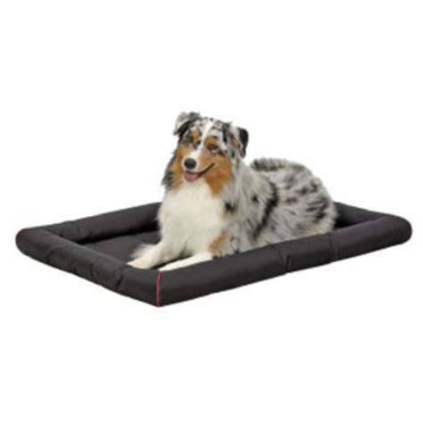 kong bed petsmart kong 174 durable crate pad pet bed crate from pet smart