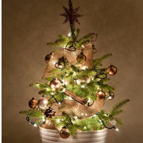 wann schm ckt man den weihnachtsbaum ab wann sollte den weihnachtsbaum schmucken europ 228 ische weihnachtstraditionen