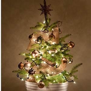 Tannenbaum Im Topf : weihnachtsbaum im topf eine lohnenswerte anschaffung ~ Frokenaadalensverden.com Haus und Dekorationen