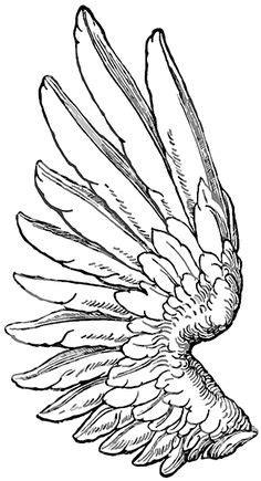 Heart Wing Logo clip art - vector clip art online, royalty free |