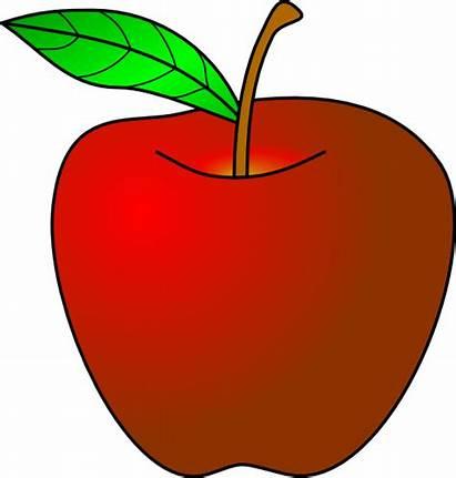 Apple Clipart Clip Teacher 1082 Clipartion