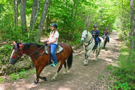 trail ride horse riding horseback farm rides spring riders maine summer carriage carousel peek deals groupon dates november