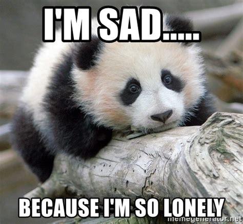 So Lonely Meme - i m sad because i m so lonely sad panda meme generator