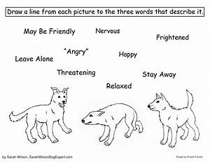 Canine Body Language Coloring Page - SarahWilsonDogExpert.com