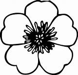 Flower Coloring Pages Poppy Printable Stencil Templates Template Cut Patterns Pattern Petal Printablee Via sketch template