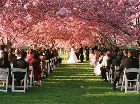 bride   budget    cheap places   married