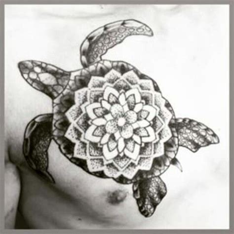 turtle ink images  pinterest turtles sea