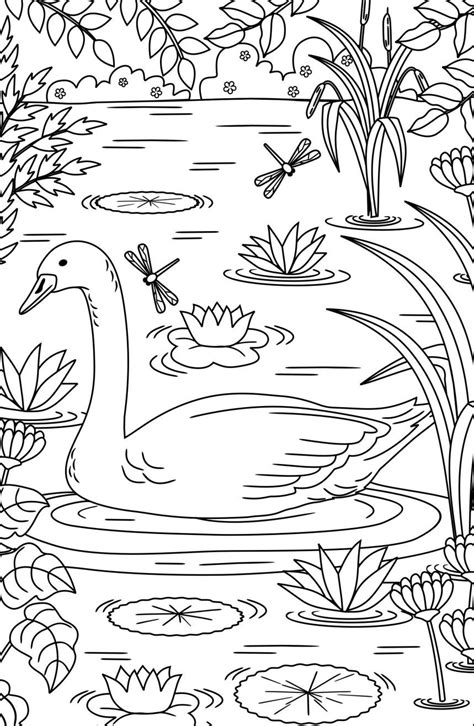 twenty adult coloring pages coloring pages adult
