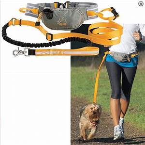 Hands free dog leash for runners japanese chinese war for Dog running belt