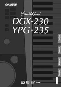 Yamaha Musical Instrument Dgx Ypg