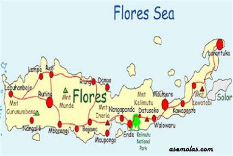 peta flores world map weltkarte peta dunia mapa del