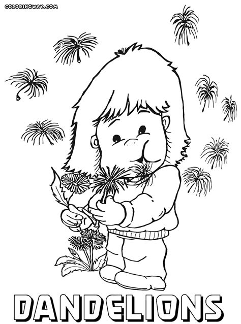 dandelion coloring pages coloring pages