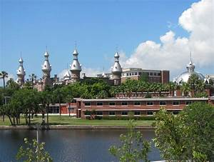 College Acceptance Essay University Of Tampa Admissions Sat Scores Admit Rate