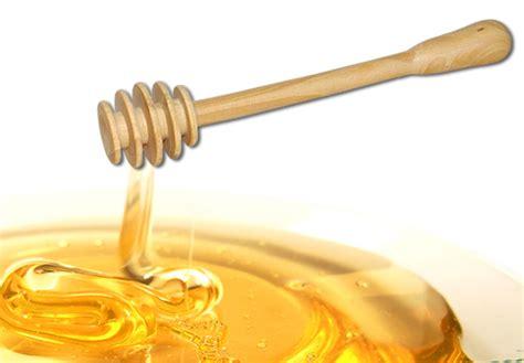 cuillre miel en bois de buis naturel bois poterie