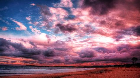 pink clouds  wallpapers  android apk