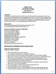 Best Resume Website Examples Sap Security Consultant Sample Resume Format In Word Free