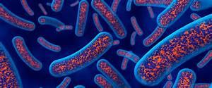 Que son las toxinas y como podemos eliminarlas locura for Como mantener libres de toxinas