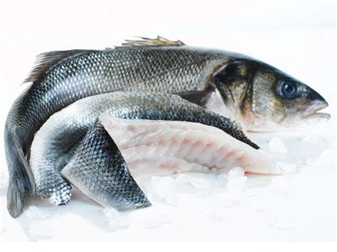 sea bass fish whole sea bass online whole sea bass buy fish fish delivery from the fish society