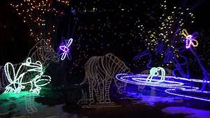 Denver Zoo Lights 2013