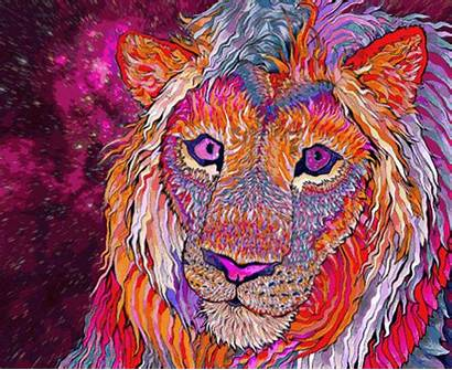 Trippy Lion Psychedelic Animated Fantasy Psicodelia Wallpapers