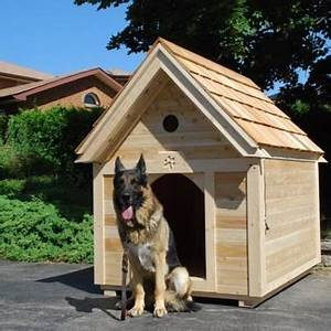 32 best images about dog houses on pinterest insulated With creative dog houses