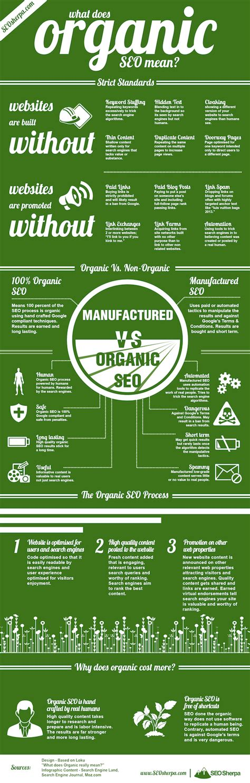 Organic Seo by The Organic Seo Process Infographic