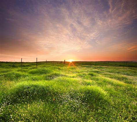 critter sitters blog lovely landscapes