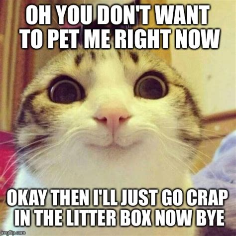 Smiling Meme Smiling Cat Memes Imgflip