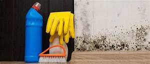 Schimmel In Wohnung Mietrecht : mietminderung bei schimmel schimmelbefall in der wohnung ~ Watch28wear.com Haus und Dekorationen