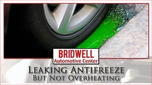 Leaking Antifreeze But Not Overheating